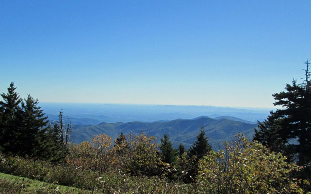 Hike on Mount Mitchell