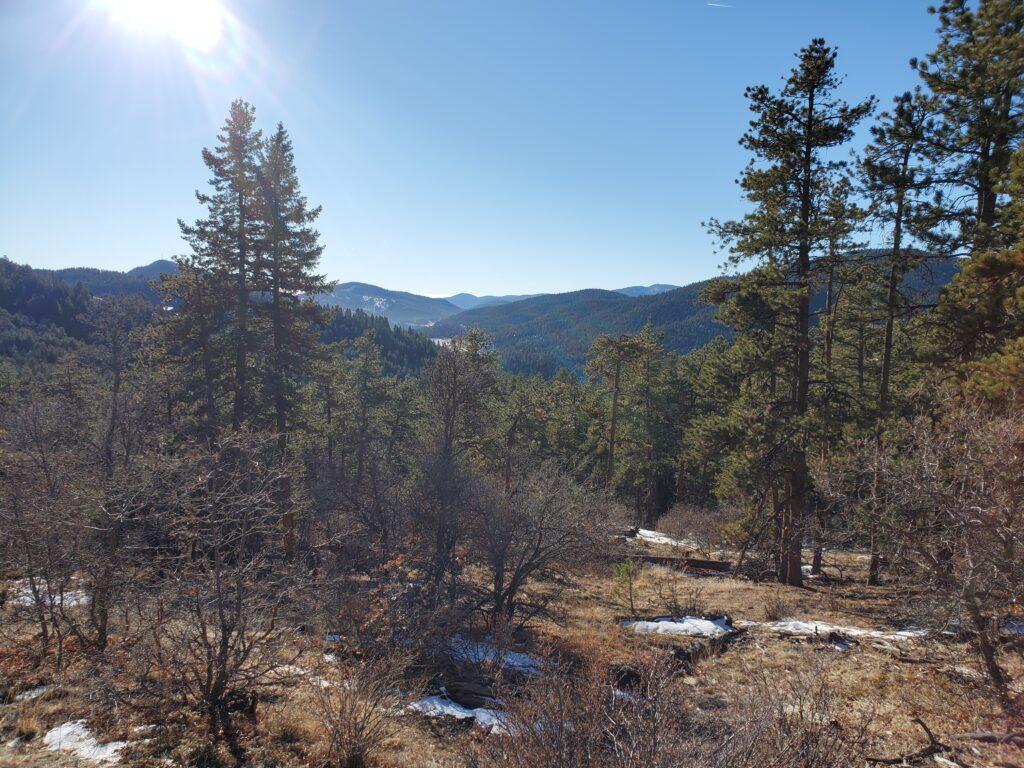 Mount Falcon Scenery
