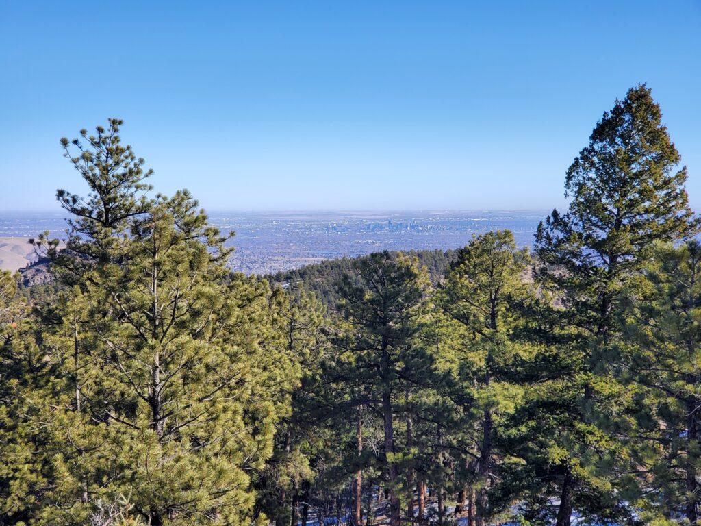 Mount Falcon View