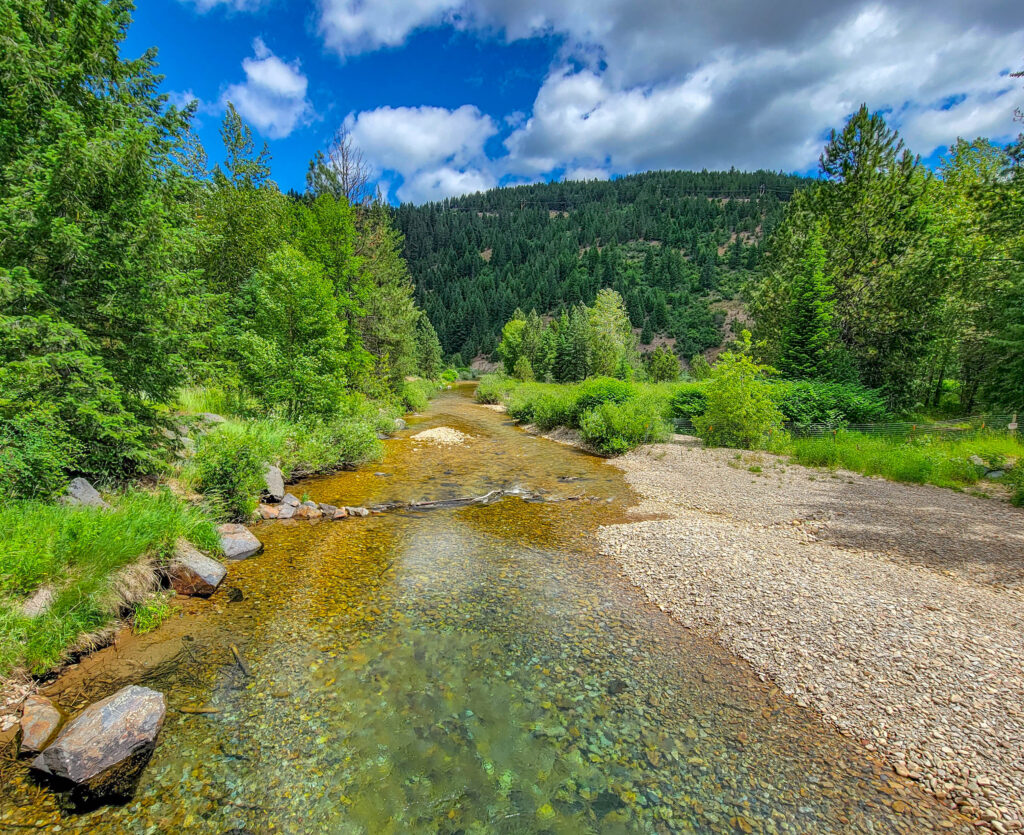 Portion of the Coeur d'Alene River