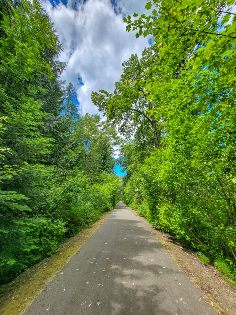 Portion of Trail of the Coeur d'Alenes