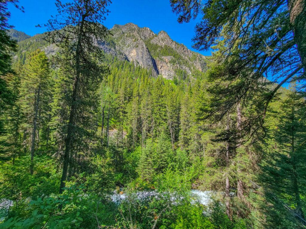 View of Absarokas from Pine Creek