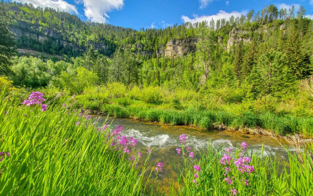 Scenic Drive – Spearfish Canyon MT