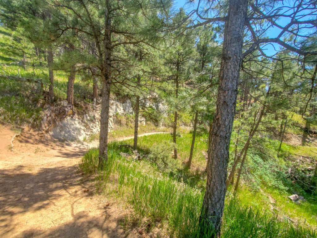 HLMP trails