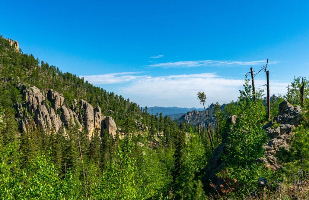 View from Needles Highway overlook