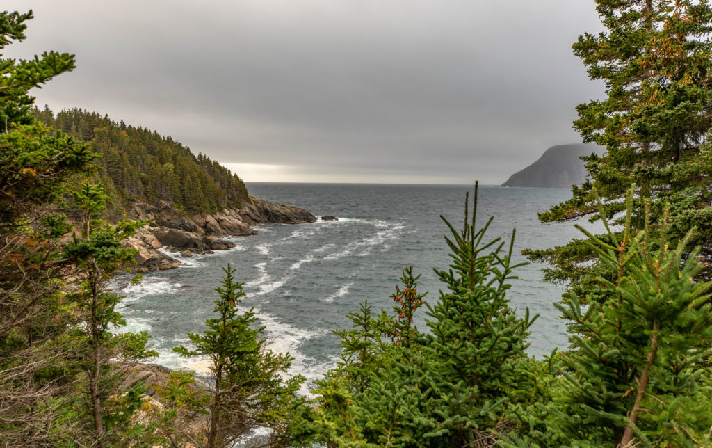 View from Middle Head Trail on Cape Breton Island