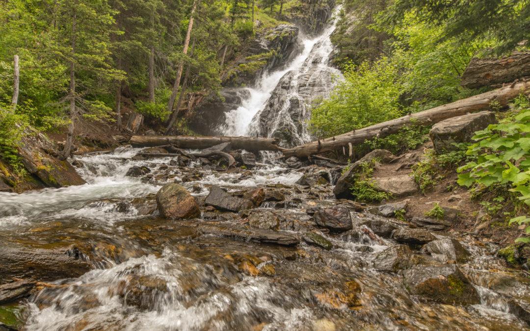 Bozeman Hike – Pine Creek Trail